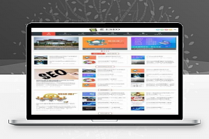 织梦SEO优化技术教程网站源码 自适应手机端